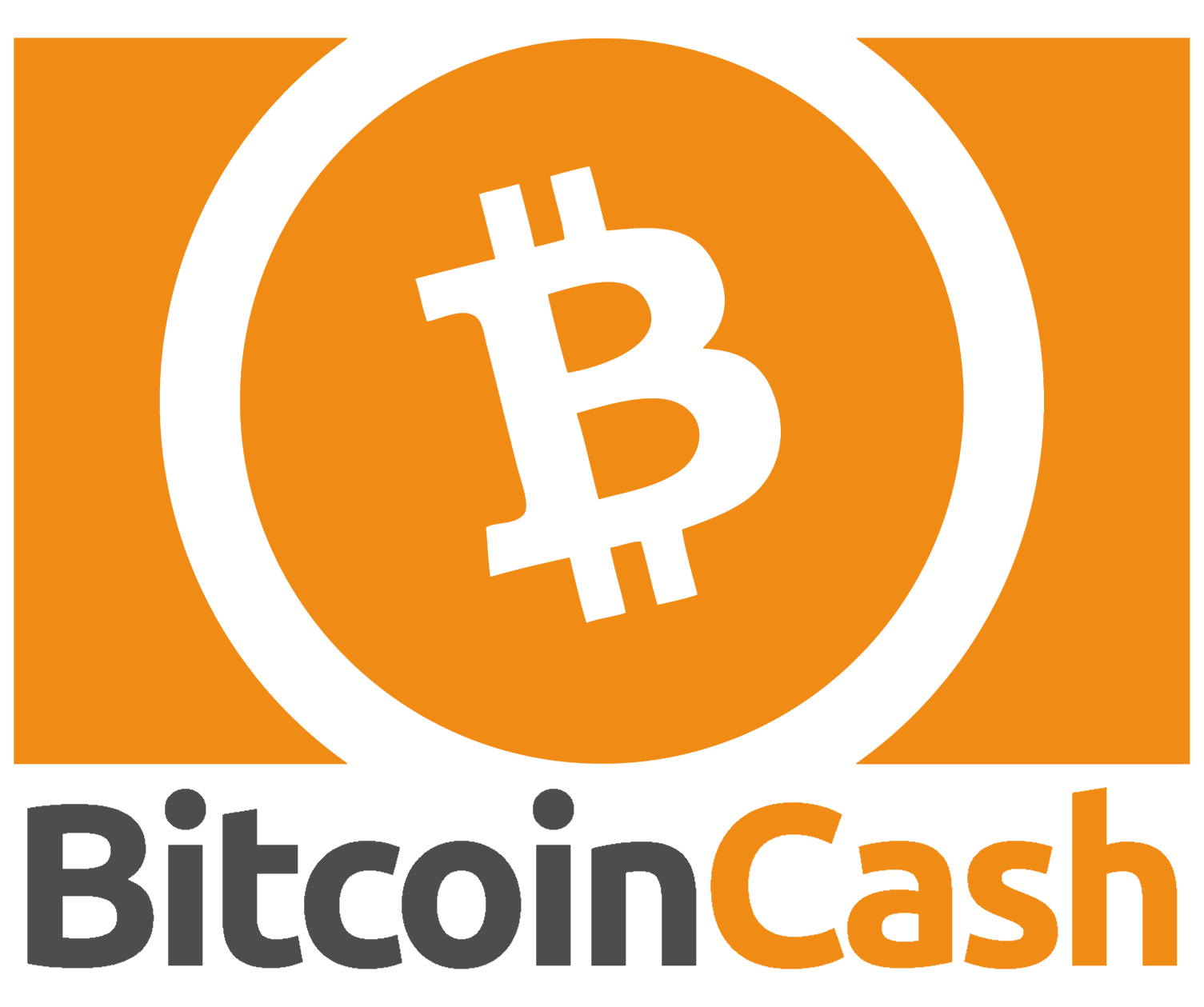 ELI5 The Controversial BCH Fork (Bitcoin SV)