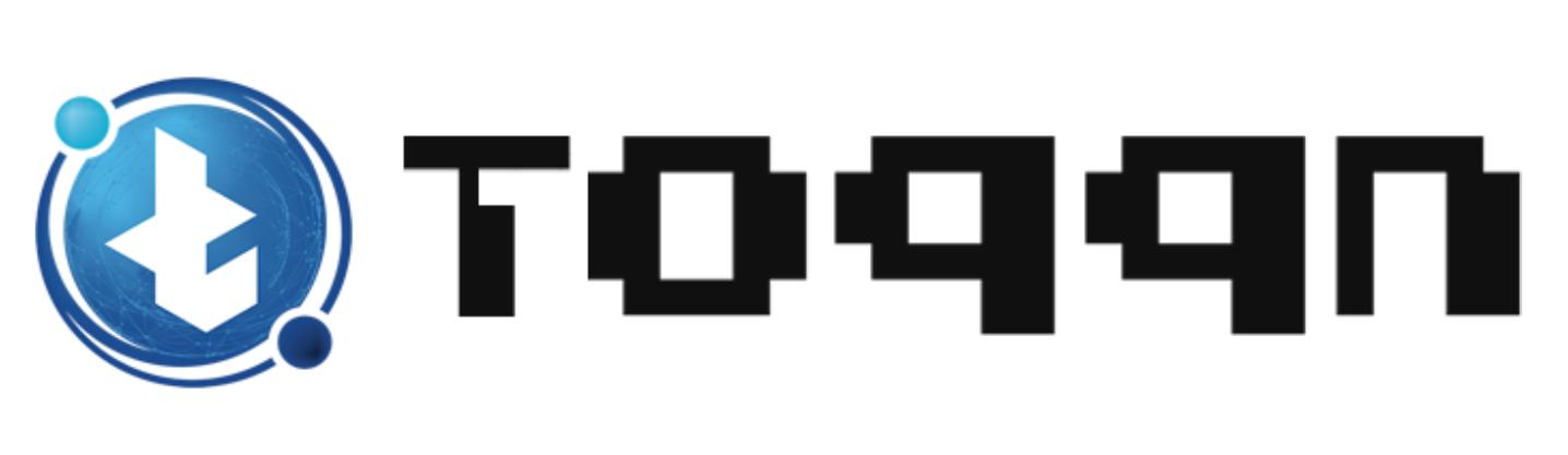 Toqqn : A Blockchain Based Social Platform
